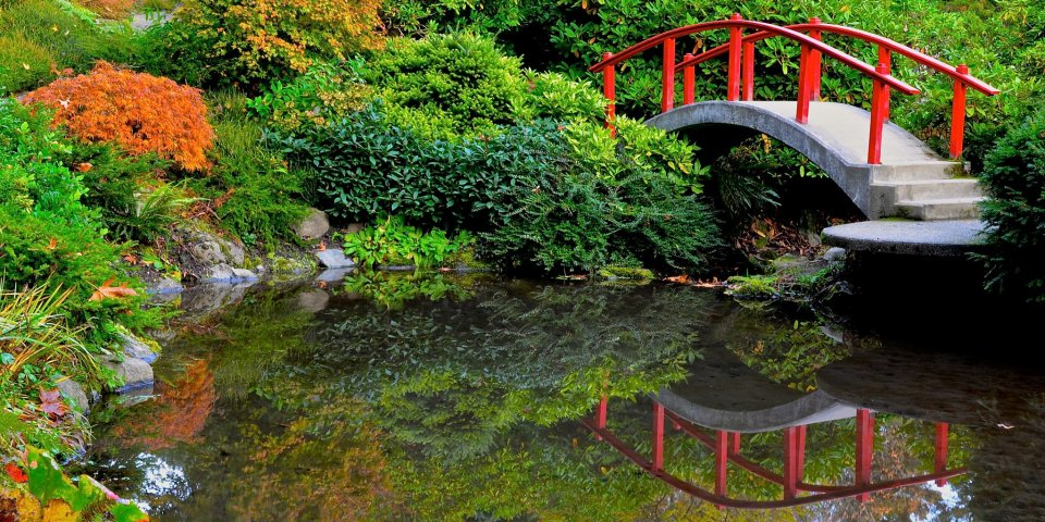 The Kubota Garden bridge in Seattle, Washington. It's a sunny day at the Kubota pond.