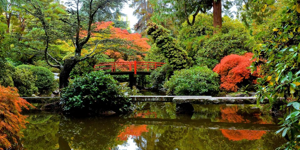 Kubota Garden in Seattle.