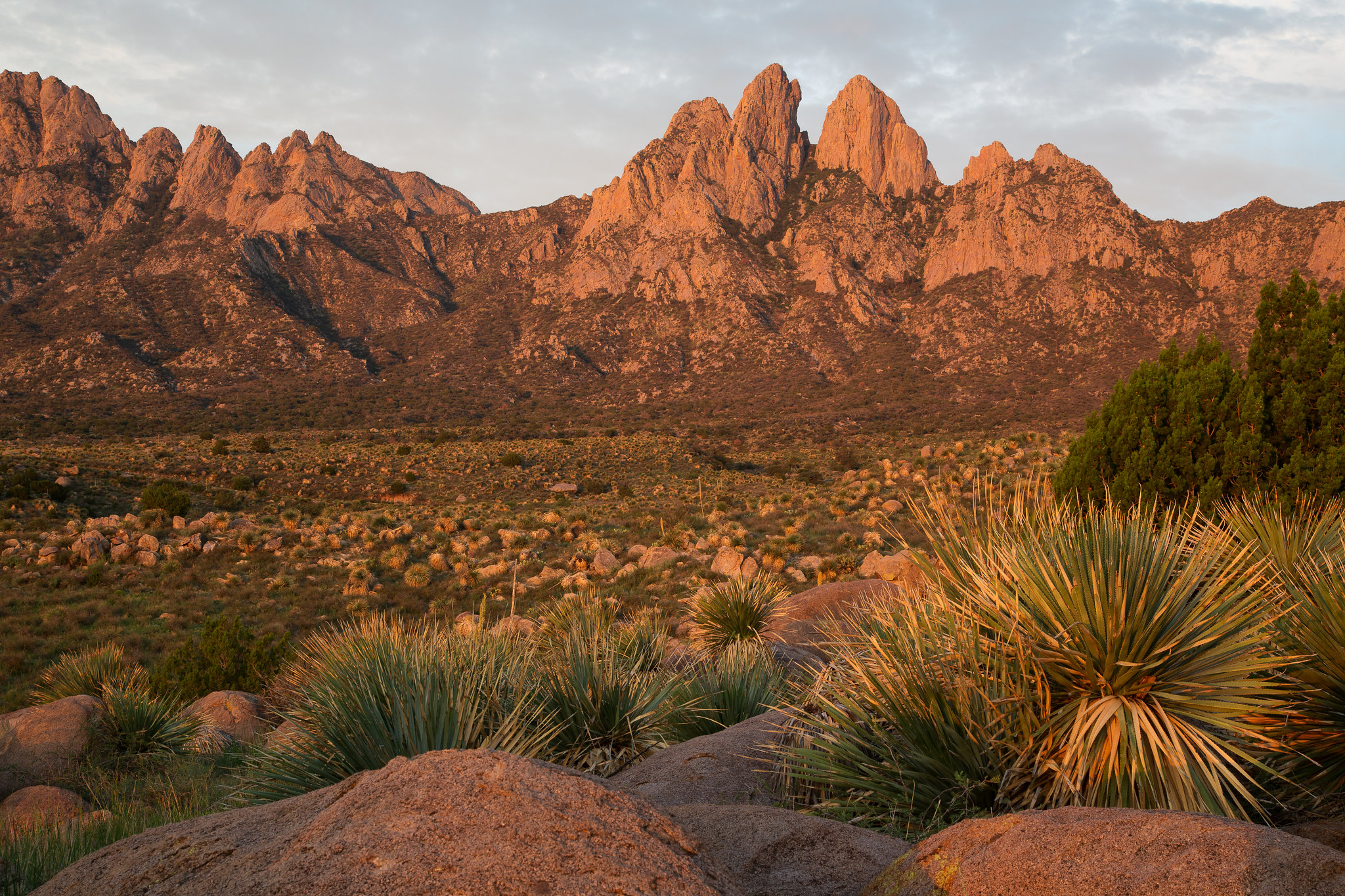 Sunset over the Organ Mountains near Las Cruces, New Mexico.