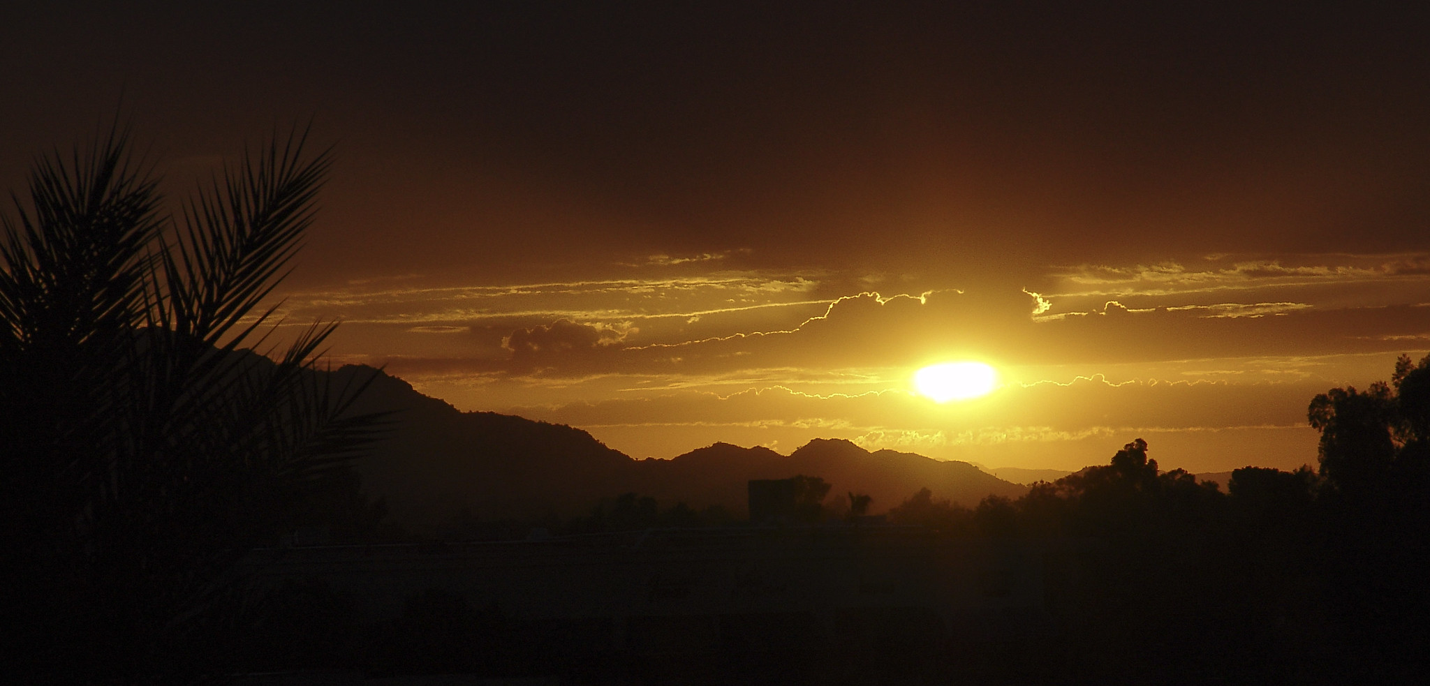 The golden sun sets over Phoenix, Arizona, reminding us that all will be okay as long as the sun sets and sun rises, the coronavirus won't beat us.