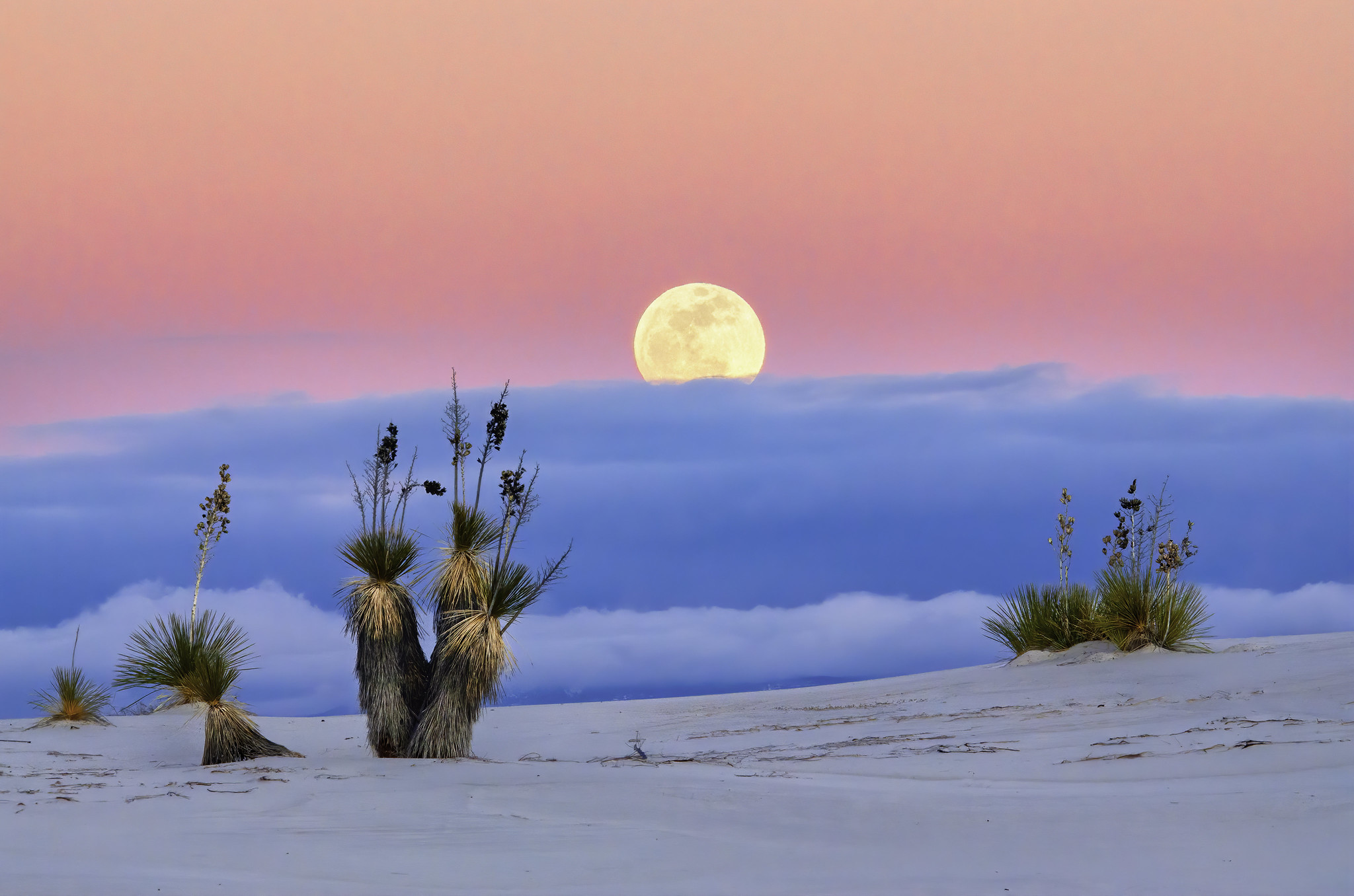 The moon rises above the White Sands National Monument in New Mexico with blue and pin pastel colored skies.