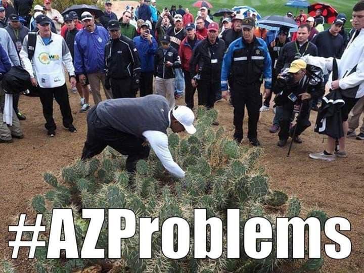 Arizona Golf Meme