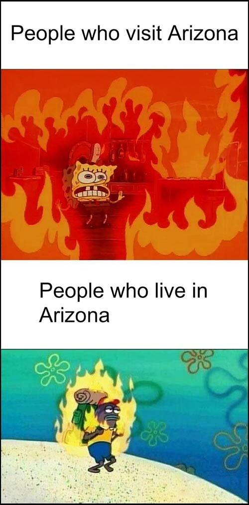 Arizona Heat Meme