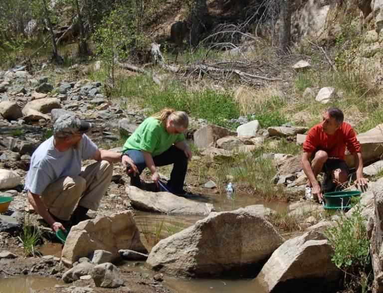 Lynx Creek gold panning in Arizona