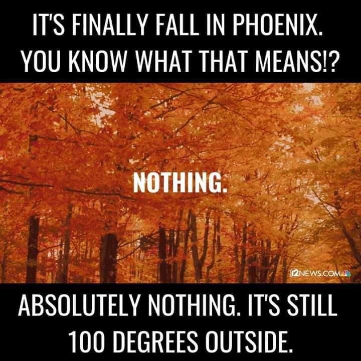 Phoenix Arizona Memes