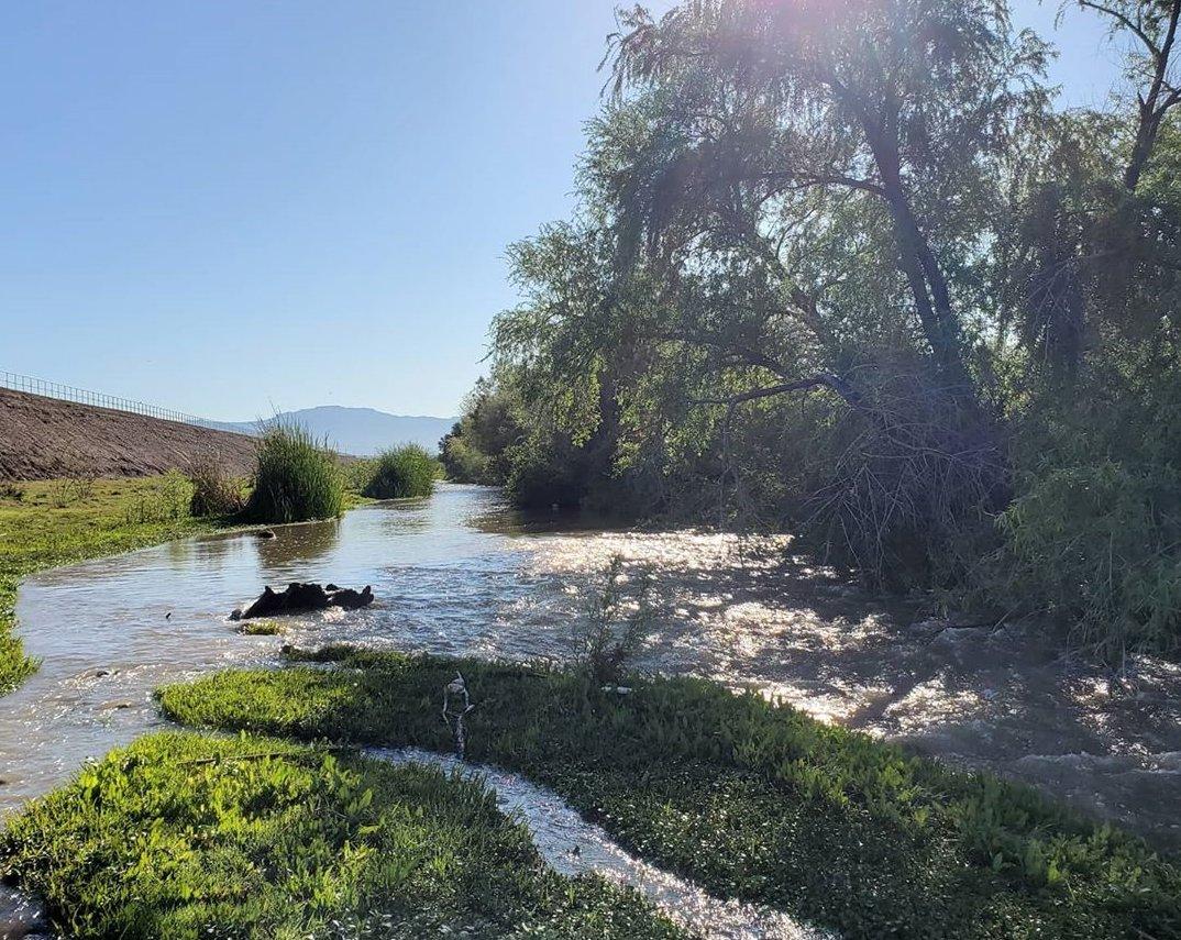 Santa Cruz River gold panning in Arizona