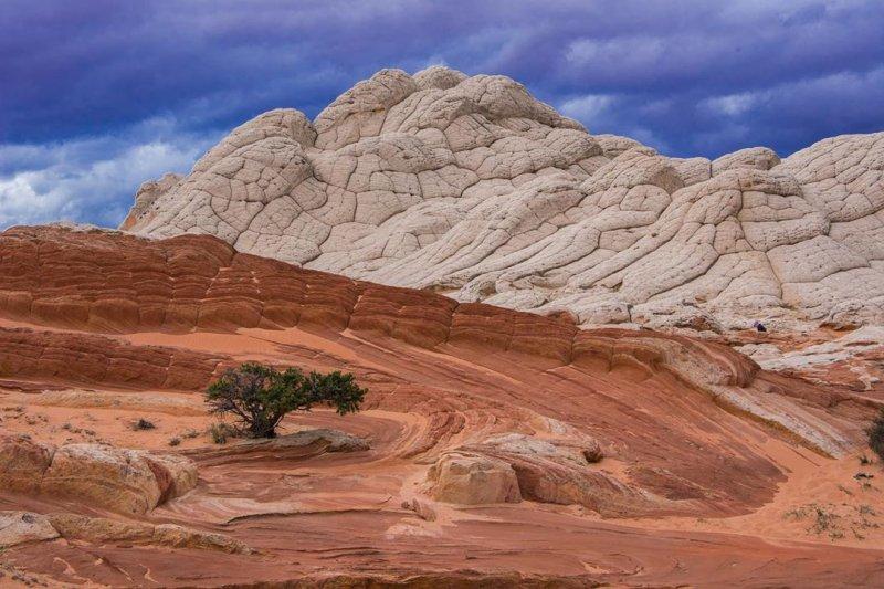 White Pocket Vermilion Cliffs