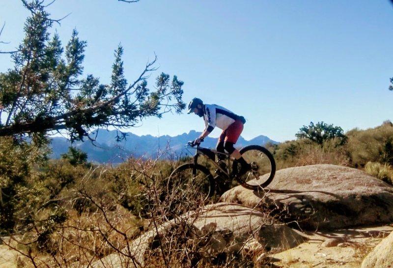 50-Year Trail arizona