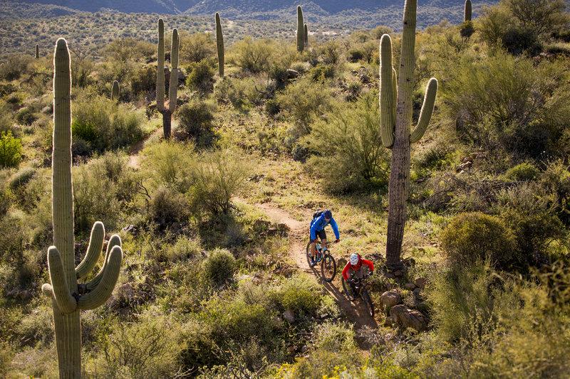Black Canyon Trail bike trails in arizona