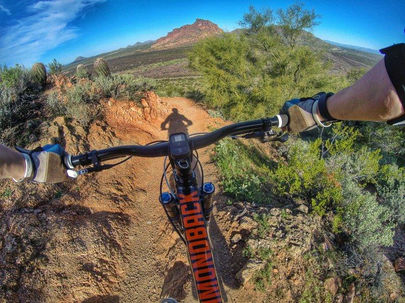 Hawes Trail Network best bike trails in arizona