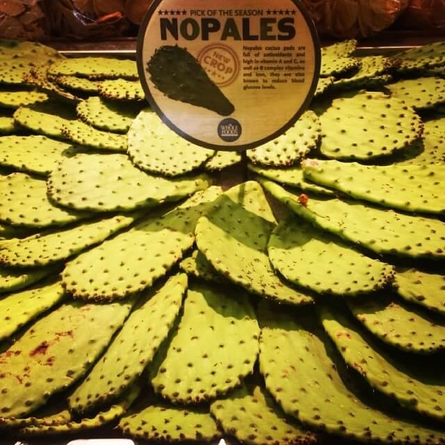 Nopales Cactus Pads AZ