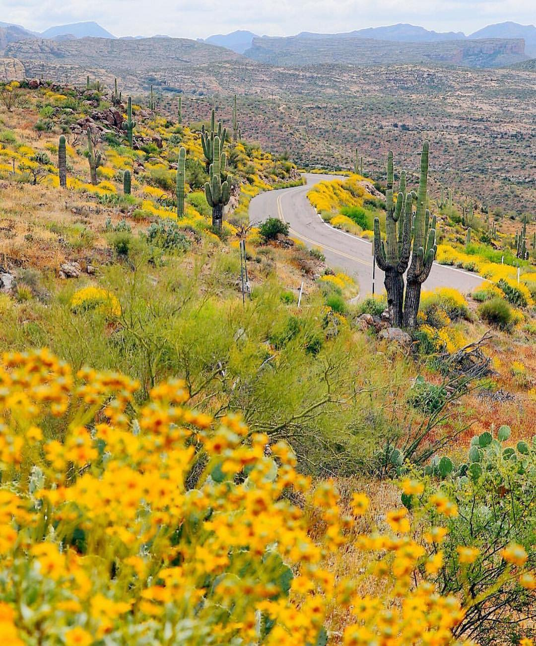 Apache Trail Scenic Drive az