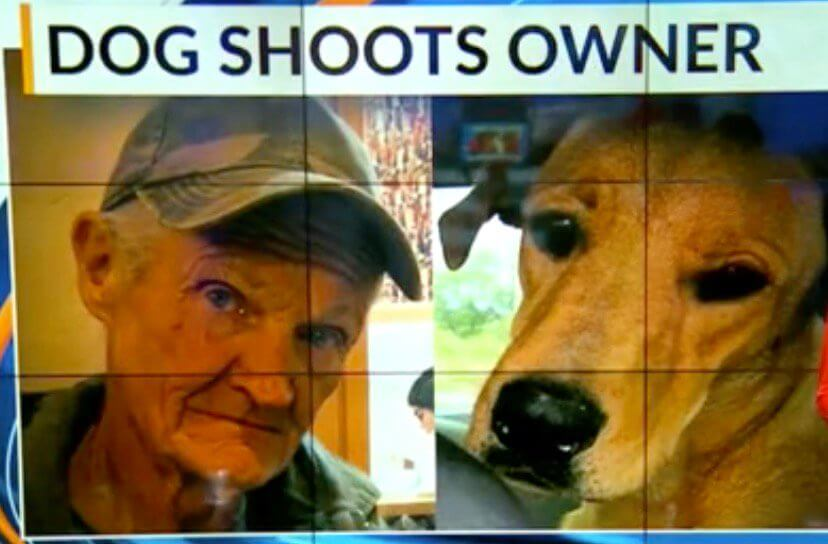 dog accidentally shoots owner nm