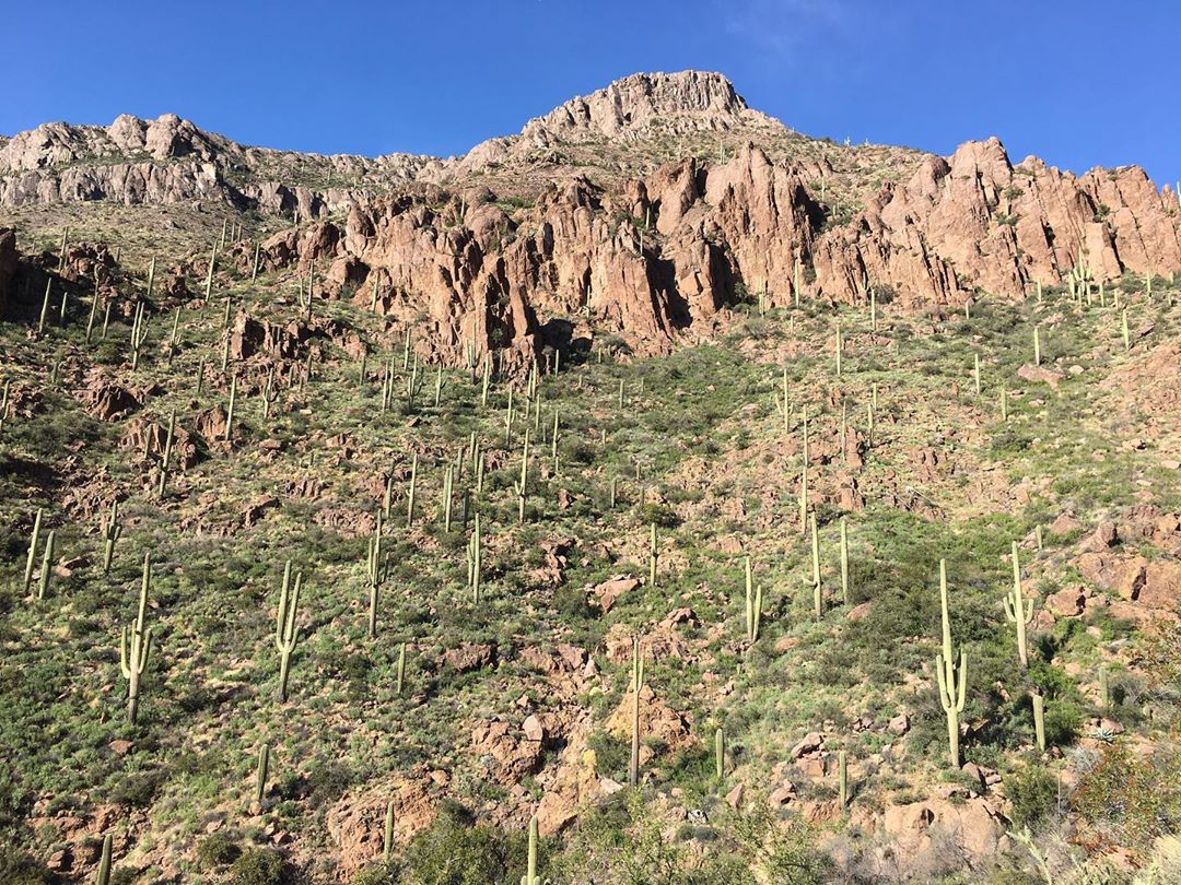 Superstition Mountains desert hike