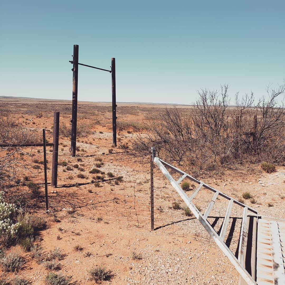 ufo site in roswell new mexico