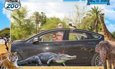 Cruise the Zoo phoenix zoo tour