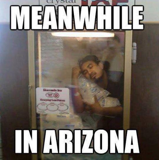 Inside the Refrigerator best arizona summer memes