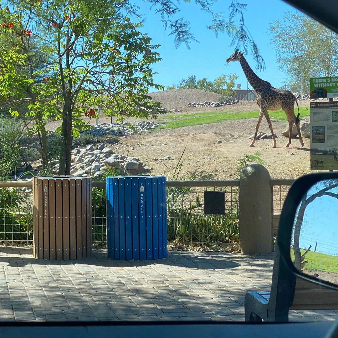 Phoenix Zoo Tour arizona