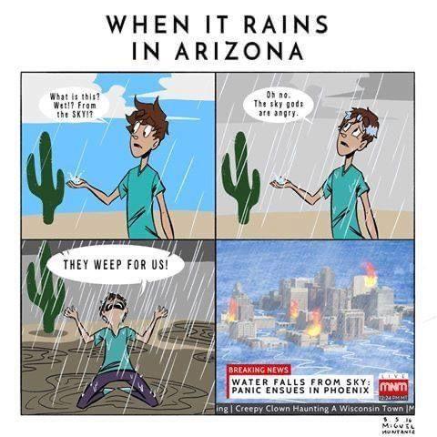 Raining in Phoenix best arizona summer memes