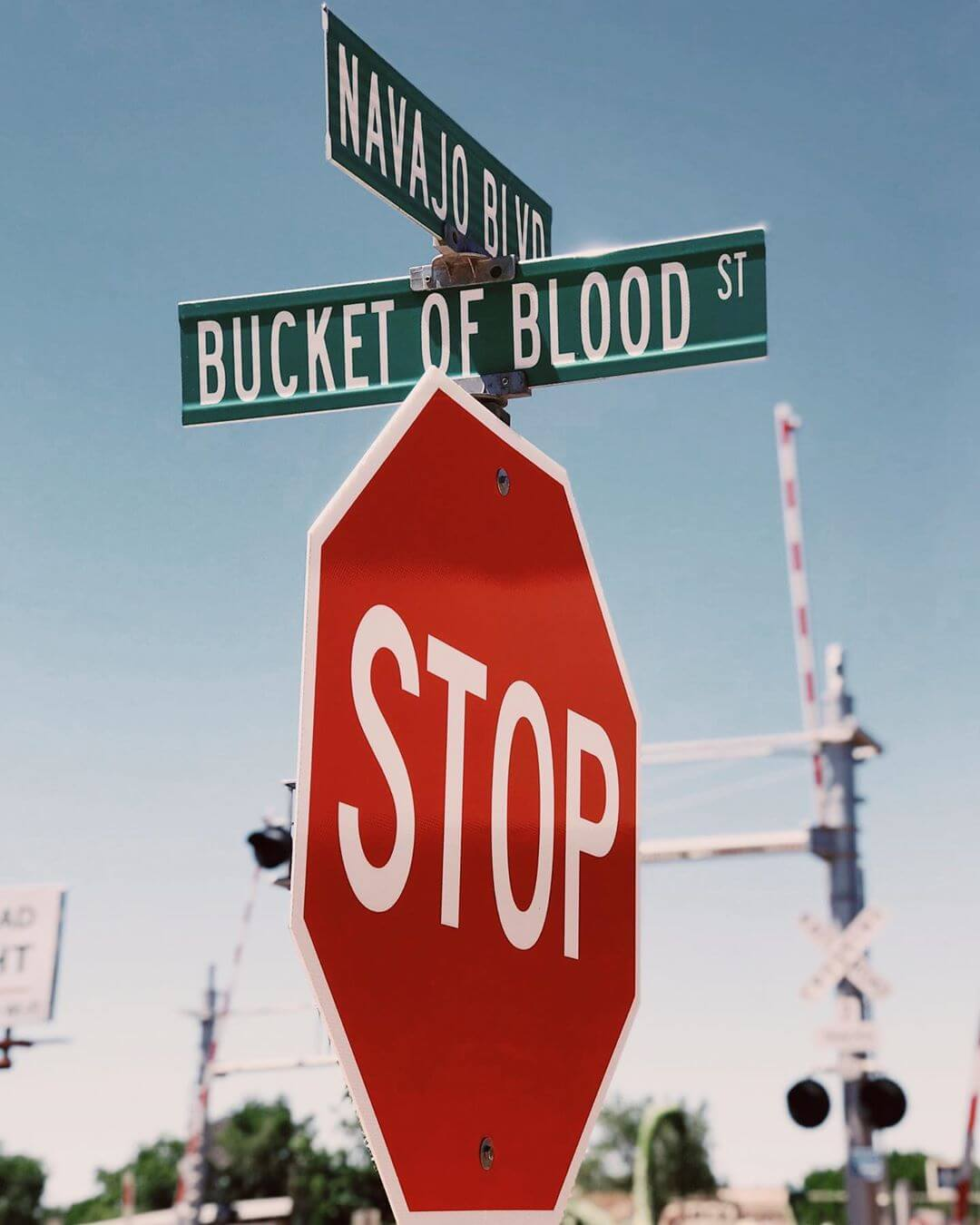 Bucket of Blood