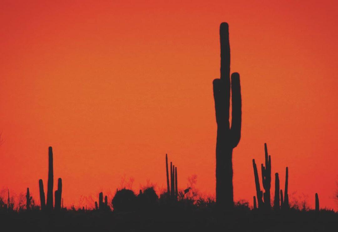 Phoenix Hottest Summer news