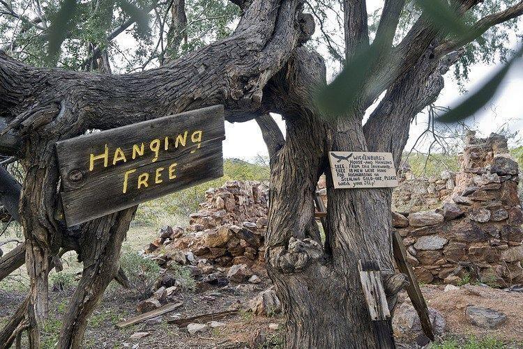 Vulture Gold Mine hanging tree