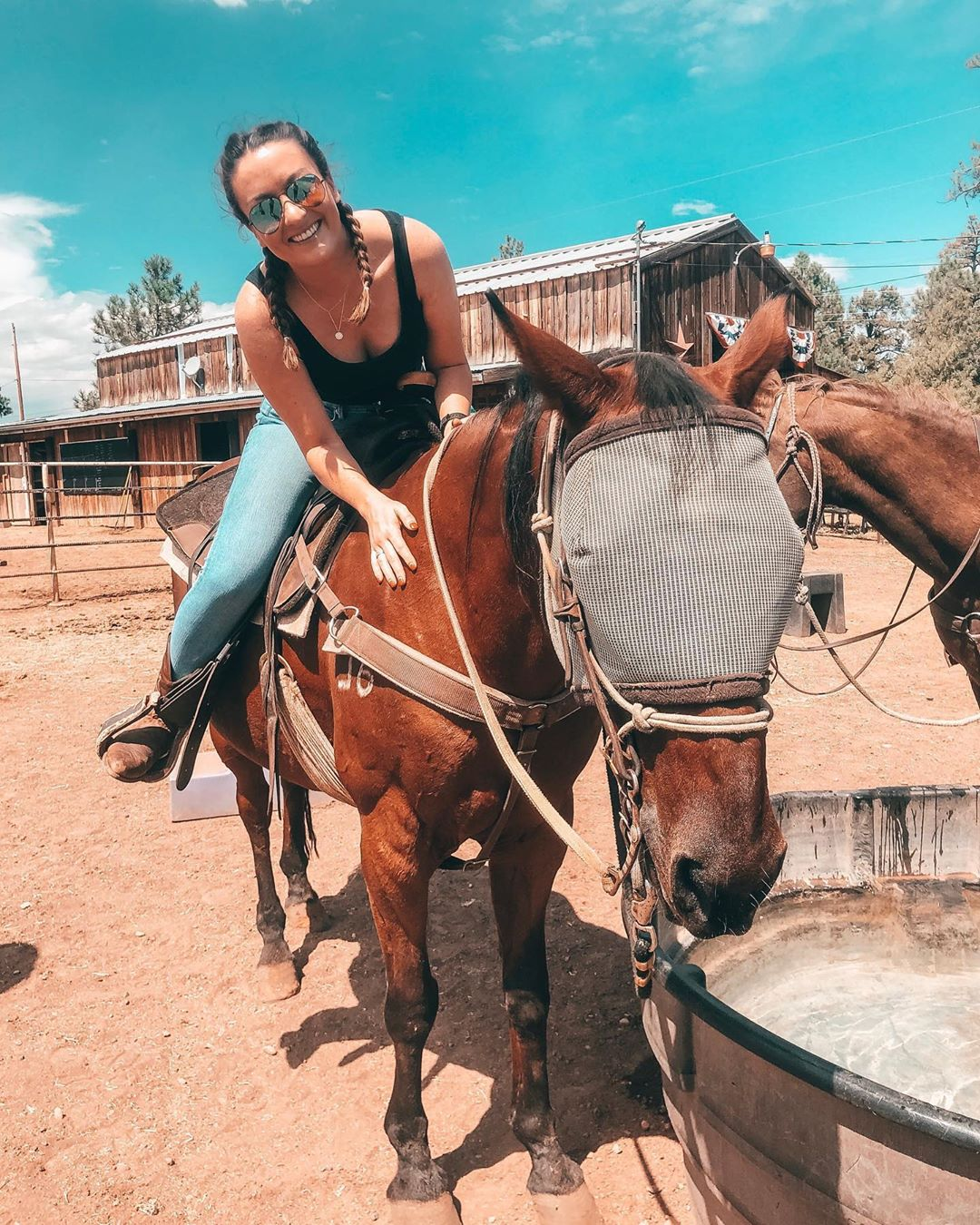 Horseback Ride Arizona Porter Mountain