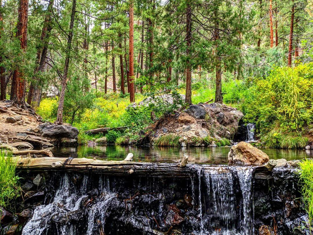 McCauley Warm Springs nature spots in New Mexico