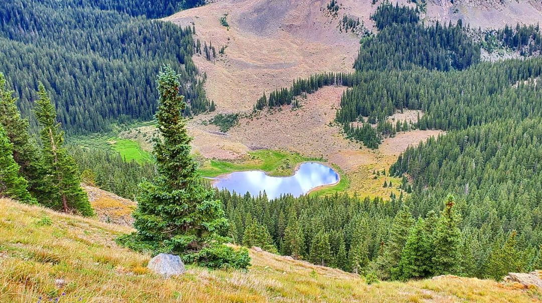Wheeler Peak Wilderness beautiful places in new mexico