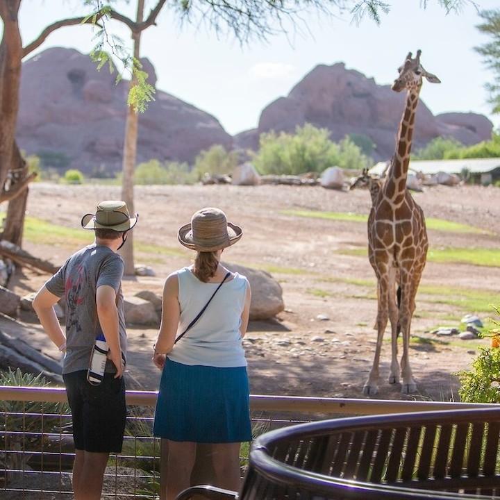 phoenix zoo reopening az