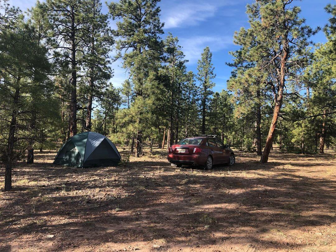 New Mexico Camping nature