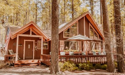 Pine Grove Chalet az vacation area