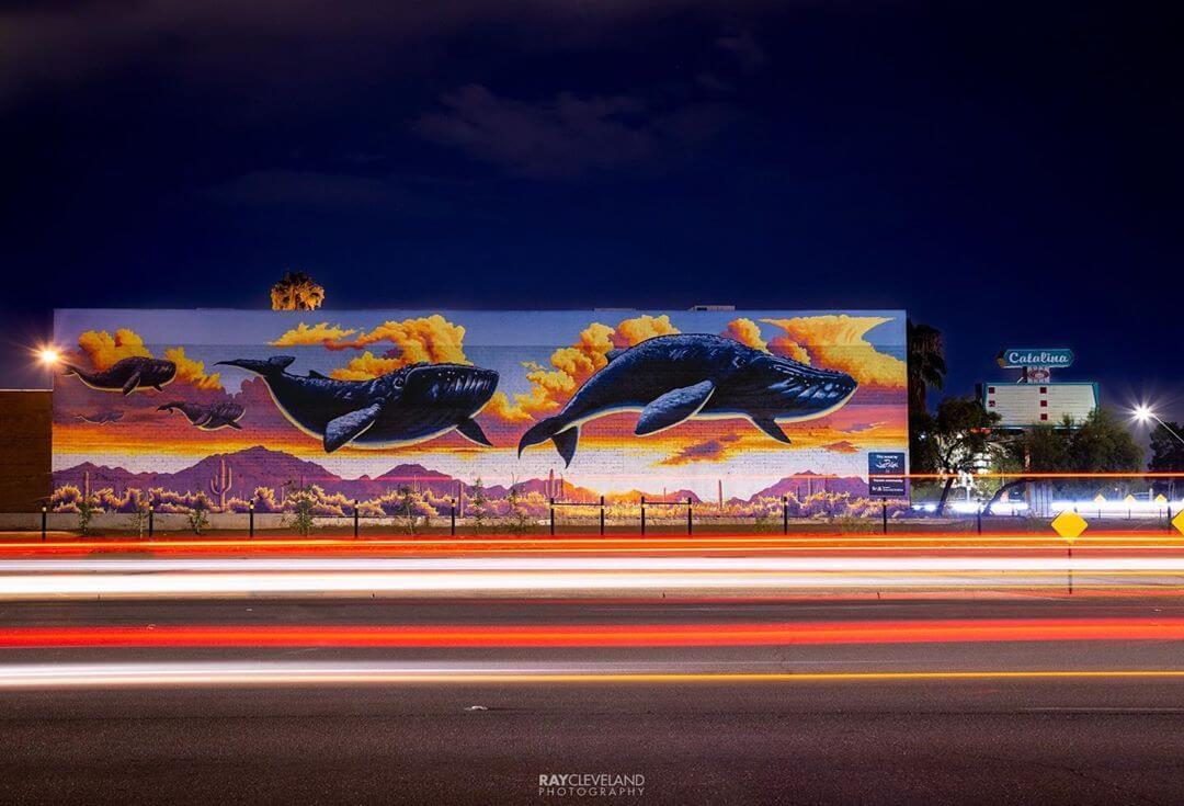 Tucson mural whale art