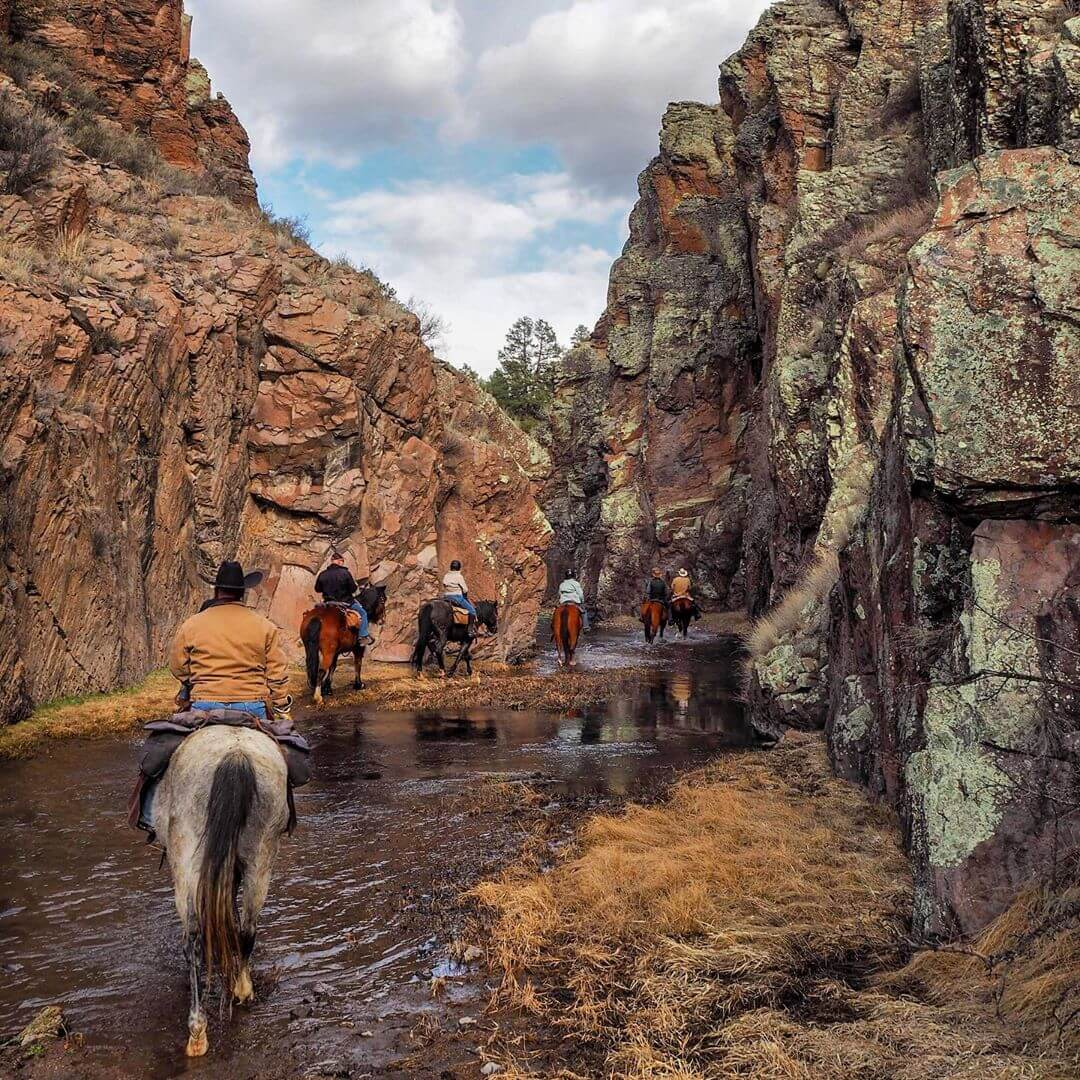 horseback new mexico