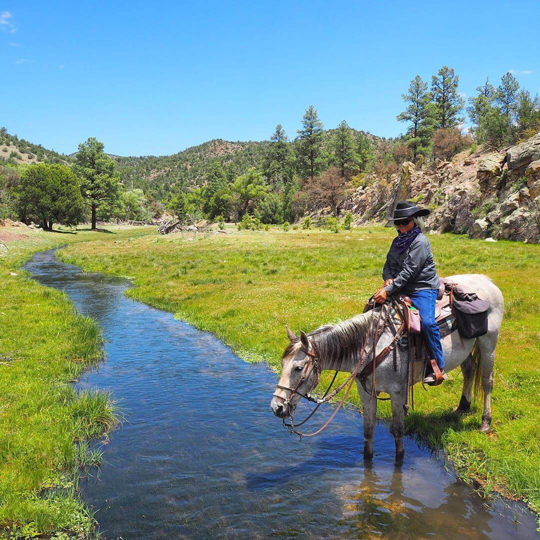 horseback riding in new mexico Geronimo Trail Guest Ranch