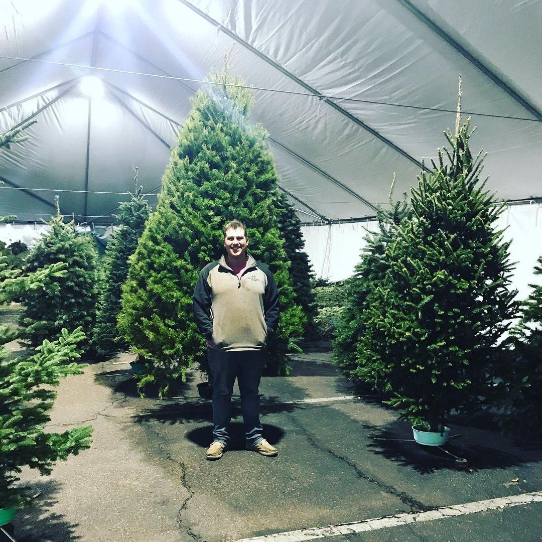Buckelew Farm best Christmas Tree Farms in Arizona