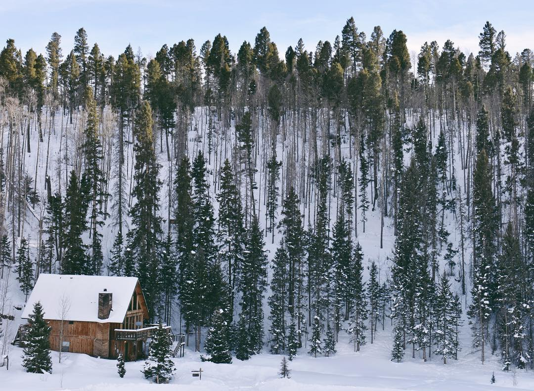 Enchanted Forest Ski Area winter destinations in new mexico