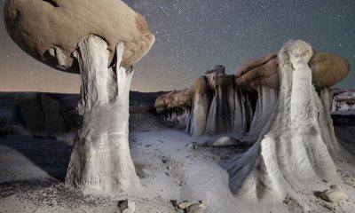 New Mexico alien landscape