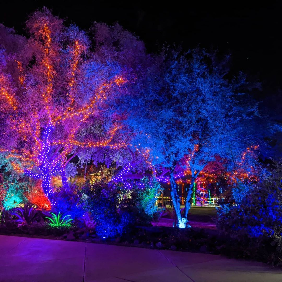 Phoenix Zoo az lights