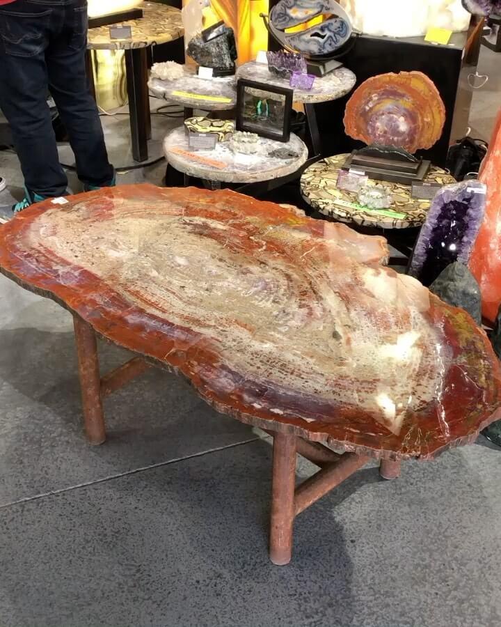Arizona petrified wood table