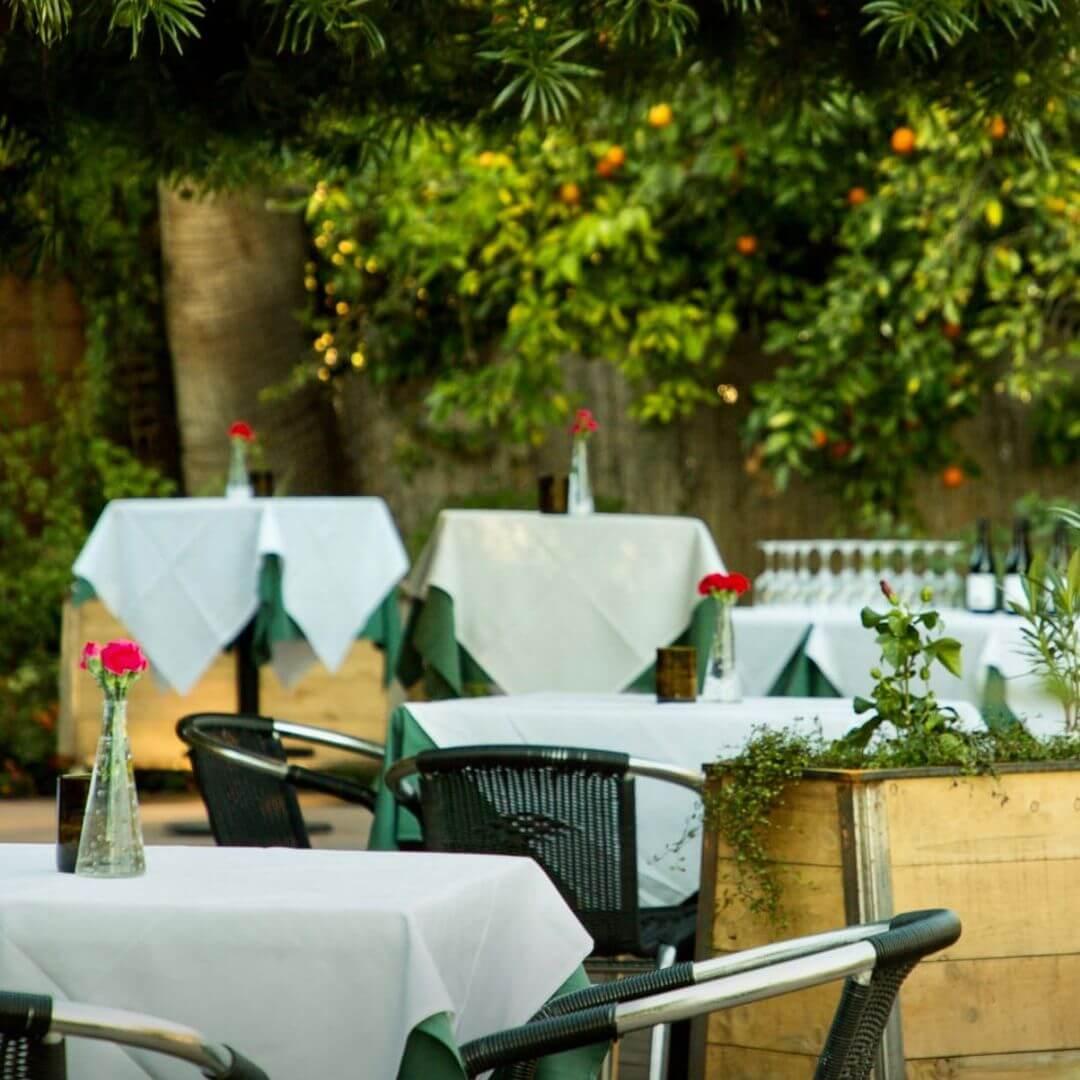 House of Tricks Arizona patio dining