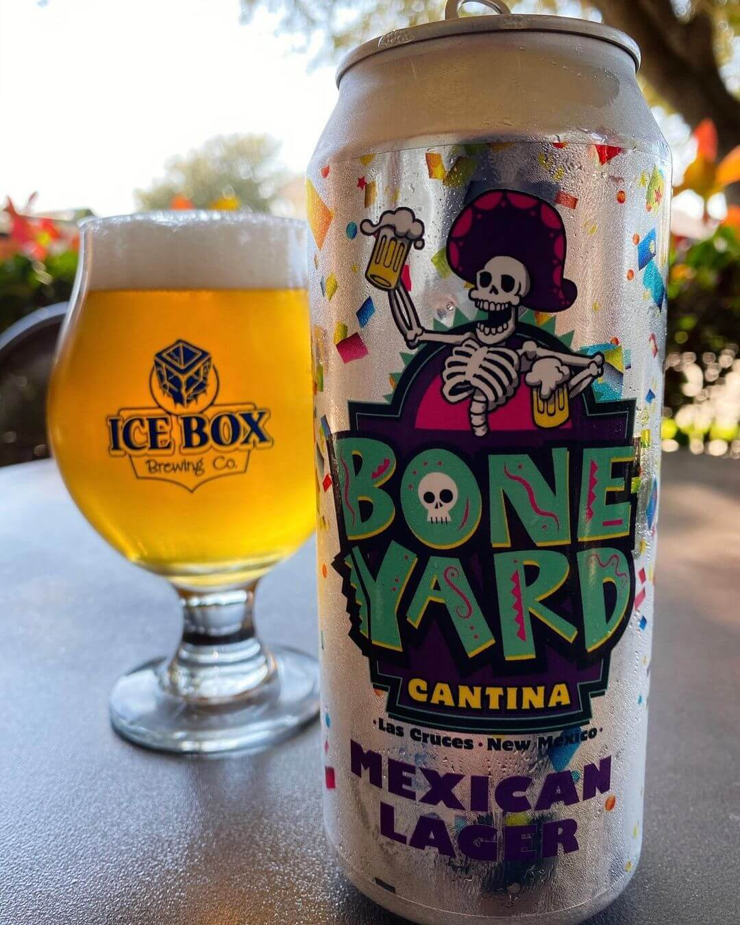 Icebox Brewery new mexico beer New Mexico Craft Breweries